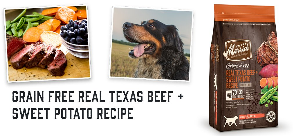 Grain Free Texas Beef